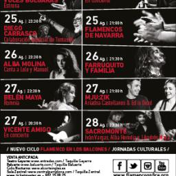 Cartel-Flamenco-On-Fire-2016-256x256